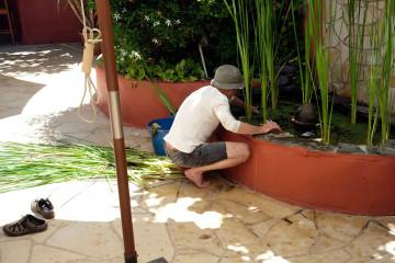 Gallery: FincaLife DSF2472 web Finca Argayall (La Gomera)