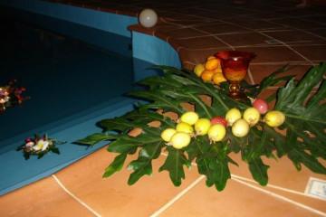 Galerie: Pool Renovierung warmwaterpool 0010 Finca Argayall (La Gomera)