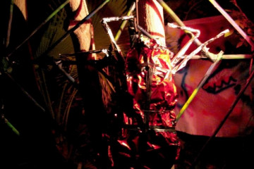 Galerie: Halloween 2008 halloween 08 000011 Finca Argayall (La Gomera)