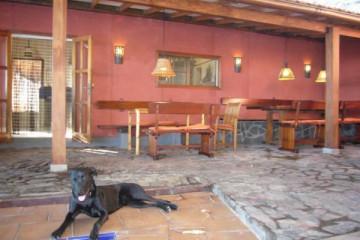 Galerie: Renovierung in Rot renovation 09 0016 Finca Argayall (La Gomera)