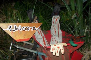 Gallery: Halloween 2009 halloween 09 000002 Finca Argayall (La Gomera)