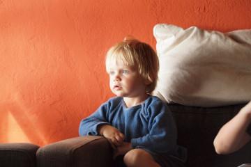 Galerie: Weihnachtszeit 2010 dezember 2010 0017 1 Finca Argayall (La Gomera)