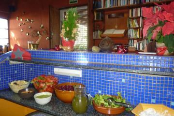 Galerie: Weihnachtszeit 2010 dezember 2010 0070 1 Finca Argayall (La Gomera)