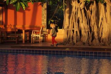 Galerie: Weihnachtszeit 2010 dezember 2010 0077 1 Finca Argayall (La Gomera)