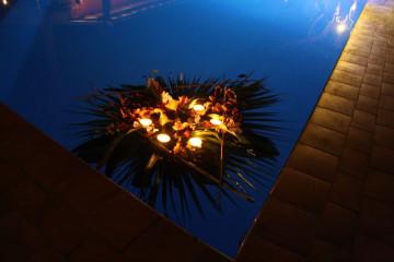 Galerie: Frohes Neues 2011 into 2011 0028 1 Finca Argayall (La Gomera)