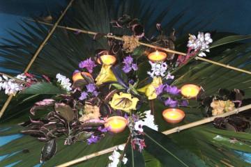 Galerie: Frohes Neues 2011 into 2011 0050 1 Finca Argayall (La Gomera)