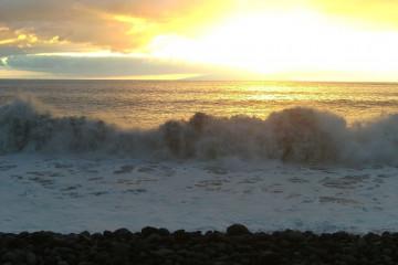 Gallery: Happy new year 2011 into 2011 0052 1 Finca Argayall (La Gomera)