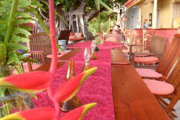 Gallery: Celebrate retreat 2011 12 1 Finca Argayall (La Gomera)