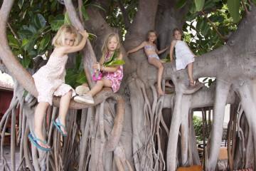 Gallery: Family Yoga family yoga 11  038 1 Finca Argayall (La Gomera)