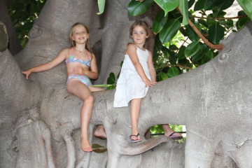 Gallery: Family Yoga family yoga 11  066 1 Finca Argayall (La Gomera)