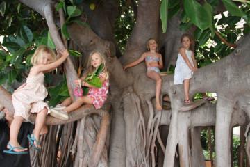 Gallery: Family Yoga family yoga 11  067 1 Finca Argayall (La Gomera)