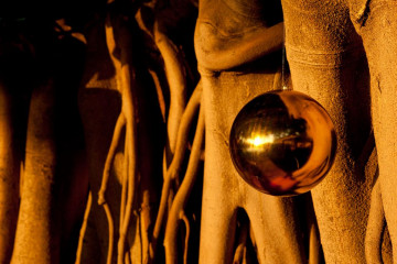 Galerie: Feste feiern christmas and newyear 11 04 1 Finca Argayall (La Gomera)