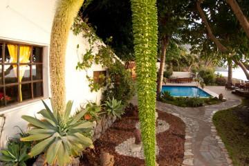 Weihnachten und Neujahr 2011 christmas and newyear 11 11 1 Finca Argayall (La Gomera)