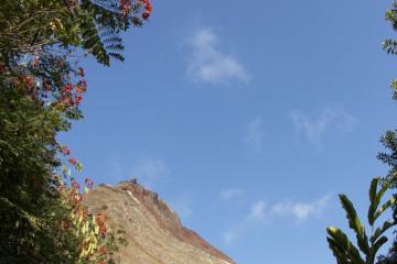 Wunderbar guest pics 12 05 1 Finca Argayall (La Gomera)