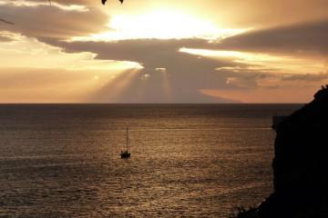 Gallery: Wonderful guest pics 12 13 1 Finca Argayall (La Gomera)