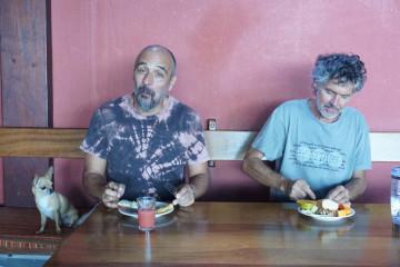 Finca impressions 2015 DSC02752 Finca Argayall (La Gomera)