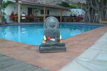 Gallery: Highlights 2004 life easterbuddha 20040411 Finca Argayall (La Gomera)