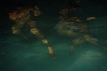 Gallery: Highlights 2004 life nightswim 2004 0725 Finca Argayall (La Gomera)