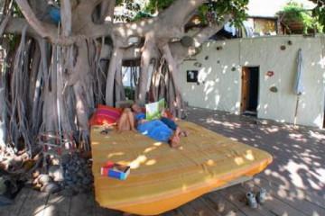 Galerie Finca Rundgang 2004 round kuschelbed01 20040730 Finca Argayall (La Gomera)