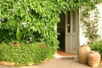 Galerie Finca Rundgang 2004 round plazaoffice 20040612 Finca Argayall (La Gomera)