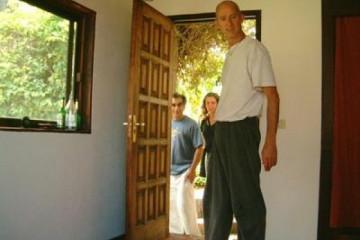 Galerie: Projekte 2003-2004 projects danisfloor03 20031020 Finca Argayall (La Gomera)