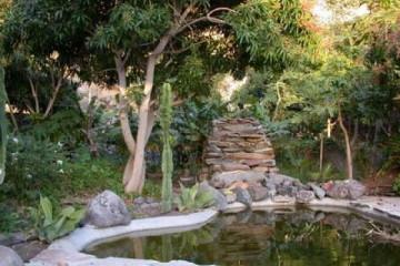 Galerie: Projekte 2003-2004 projects pond06 20040420 Finca Argayall (La Gomera)