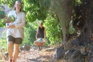 Galerie: Permakultur Vielfalt 2004 garden mangopickers 20040820 Finca Argayall (La Gomera)