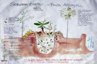 Nachhaltig leben SchwammSponge 1800x1200 1 Finca Argayall (La Gomera)