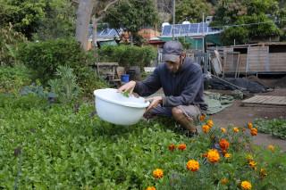 Nachhaltig leben harvest 1800x1200 1 Finca Argayall (La Gomera)
