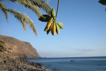 Ocean views 2007 meerblicke 2007 0007 Finca Argayall (La Gomera)