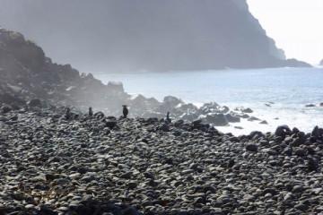 Ocean views 2007 meerblicke 2007 0009 Finca Argayall (La Gomera)