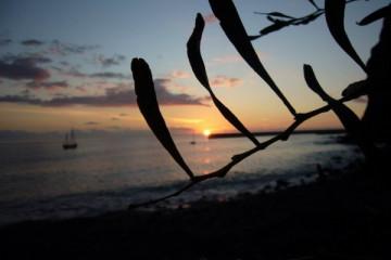 Ocean views 2007 meerblicke 2007 0014 Finca Argayall (La Gomera)