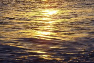 Ocean views 2007 meerblicke 2007 0020 Finca Argayall (La Gomera)
